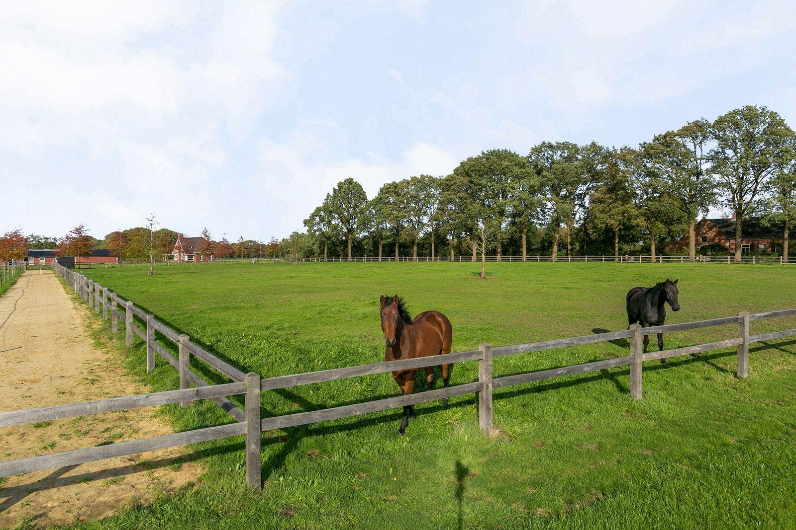Op een schitterende locatie, midden in de natuur, staat deze moderne en luxe in 2018 gerealiseerde villa welke is voorzien van alle relevante faciliteiten voor de (professionele) paardenliefhebber. Directe uitrijmogelijkheden met uw paard(en) om de prachtige natuur van Chaam te verkennen! Resideren zoals menig paardenliefhebber het voor ogen heeft in alle rust en vrijheid. Heerlijk thuiskomen waarbij optimaal genoten kan worden van de prachtige vergezichten over de uitgestrekte landerijen en weides waar uw paarden rondlopen en grazen.  Het prachtige domein van 2,88 ha (28.800 m²) is uitgerust met een buitenrijbak voorzien van Agterberg bodem, een luxe paardenstal bestaande uit een zestal ruime paardenboxen met vrije in– en uitloopmogelijkheden naar de volledig omheinde buitenweides, een poetsplaats, kantine/foyer, zadelkamer en een tweetal opslagruimtes. De paardenstal is voorzien van maar liefst 52 zonnepanelen.  Buiten de paarden zijn ook de bewoners hier van alle gemakken voorzien. Deze hoogwaardig afgewerkte villa biedt nieuwe bewoners een zee aan ruimte - de uitgelezen kans om royaal wonen met werken/hobby te combineren.   BEGANE GROND Zeer statige hal/entree met toiletruimte en vaste houten trap naar de eerste verdieping. Middels een dubbele glazen deur is de living toegankelijk.  Afwerking- tegelvloer, stucwerk wanden en een stucwerk plafond. Meterkast- 3 groepen, 4x krachtstroom en een aardlekschakelaarbeveiliging.  Toiletruimte met 'zwevend' toilet en fonteintje. Afwerking- tegelvloer, wandtegels met stucwerk en een stucwerk plafond.  Riante living met aan alle zijden een subliem uitzicht. Een plezierige– en lichte ruimte met elektrisch bedienbare screens en een romantische allesbrander. Afwerking- massief eiken houten vloer, stucwerk wanden en een stucwerk plafond.  Stijlvolle en open keuken uitgerust met een hardstenen aanrechtblad, elektrische stoomoven, een oven, koelkast met perfect fresh zone, vaatwasser en RVS spoelbak met Quooker. Het kookeiland bes